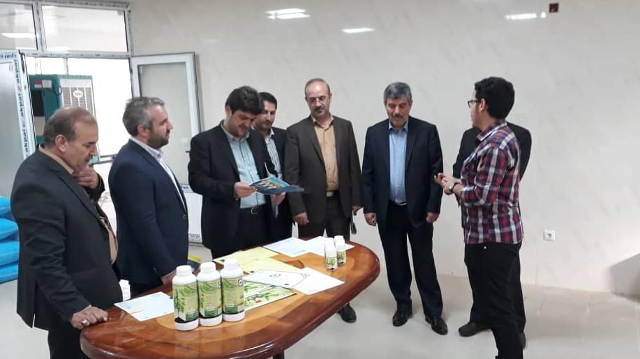 حمایت بنیاد برکتِ ستاد اجرایی فرمان حضرت امام(ره) از اشتغالزایی در حوزهی فناوری