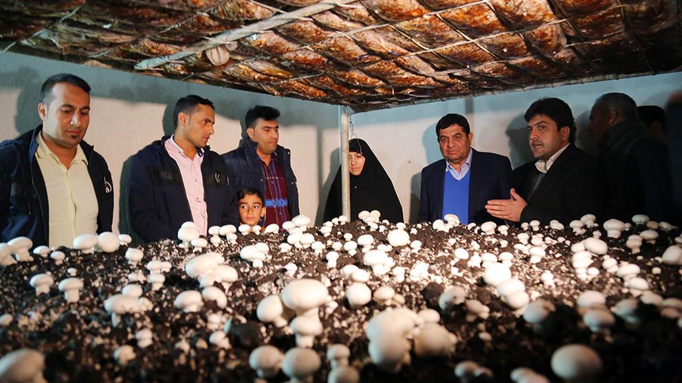 اقدامات اشتغالزایی بنیاد برکت وابسته به ستاد اجرایی فرمان حضرت امام(ره) در بخش اژیه استان اصفهان