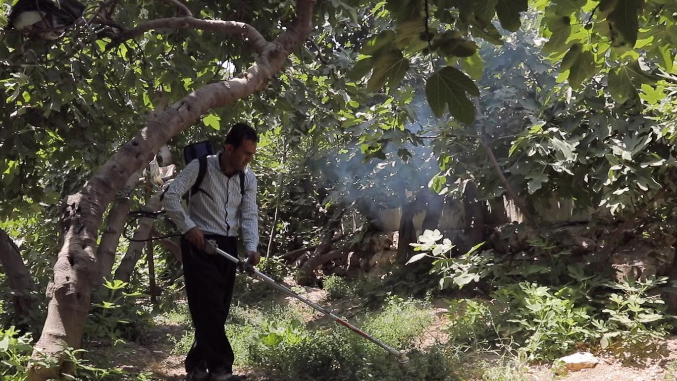 مؤسسة البركة تطلق 450 مشروعاً لتوفیر الاعمال في شرق محافظة مازندران