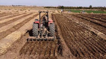 احیاء 280 هكتار من الاراضي الزراعیة في مدینة رامهرمز بمشاركة مؤسسة البركة.