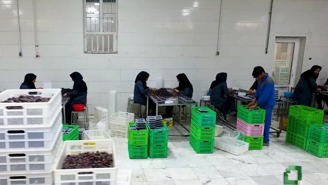 طرح توانمندسازی اقتصادی و اشتغالزایی بنیاد برکت: شرکت ستایش مهر بیرمی